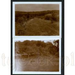 Zestaw dwóch czarno białych fotografii z krajobrazem lasu