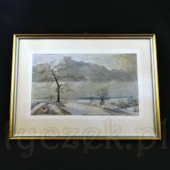Horyzontalna kompozycja ukazuje ośnieżone połacie, z których wyrastają bezlistne drzewa i krzewy