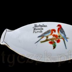 Motyw papug Australian Rosella Parrots