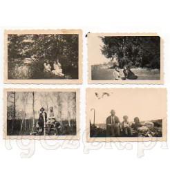 Komplet czterech zdjęć na łonie natury