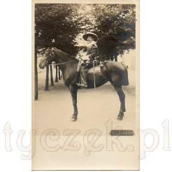 Dostojny muszkieter z wąsem na pięknym koniu na pocztówce zdjęciowej