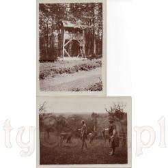 Na pierwszym zdjęciu ambona myśliwska, na drugim zdjęciu jelenie karmione przez kobietę i dziewczynkę na leśnej polanie