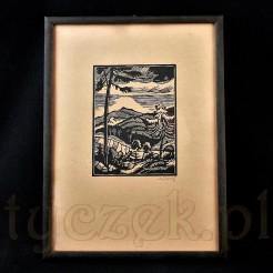 Aus Böhmerwald - Szumawa. Kompozycja z widokiem na górski pejzaż.