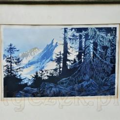 Horyzontalna kompozycja pejzażowa przedstawia ośnieżone, górskie szczyty widziane z perspektywy lasu iglastego