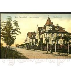 Widok na zabudowę sanatoryjną w Bad Oppelsdorf dzisiejsze Opolno Zdrój