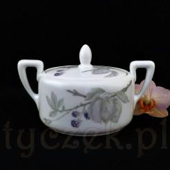 Gałązki jeżyn w szarościach i fioletach na porcelanie Rosenthal Isolde