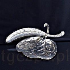 Plater czyli mosiądz srebrzony powierzchniowo