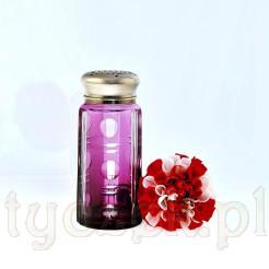 Precyzyjnie wykonany szklany pojemnik z metalowym sitkiem służący do przechowywania cukru pudru