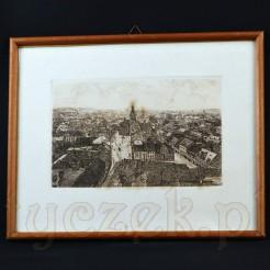 Widok z lotu ptaka na niemieckie miasto bogato wypełnione zabytkową architekturą.