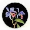 Przepiękne storczyki Cattleya na porcelanie Rosenthal