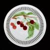 Zabytkowy okaz; majolikowy talerz z końca XIX wieku