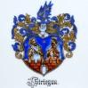 Wyjątkowo pięknie namalowany herb Strzegomia z podpisem STRIEGAU